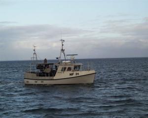 Garnbåd, Rødvig 800, Ternen, udført i glasfiber